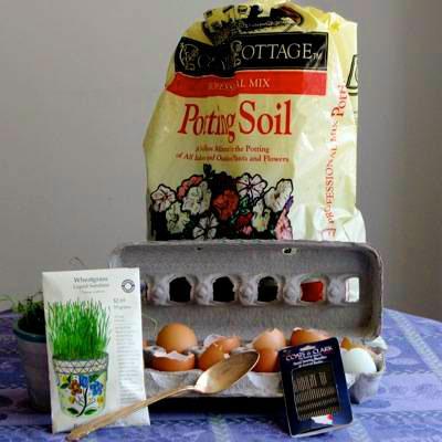 اموزش سبزه عید در بطری آموزش کاشت سبزه عید در پوست تخم مرغ