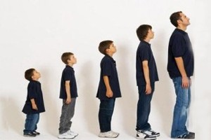 مراحل رشد شخصیت در انسان