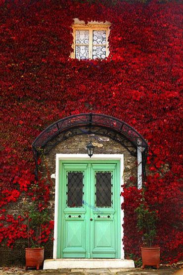 تصاویر: ورودی های زیبای ساختمان