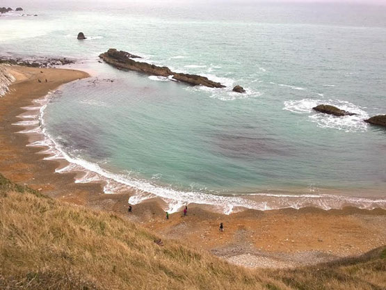 الگوهای مرموز در ساحل که دانشمندان قادر به توضیح آن نیستند