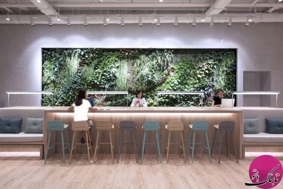 دیوارهای سبز، نمایی زیبا و دلنشین در چیدمان