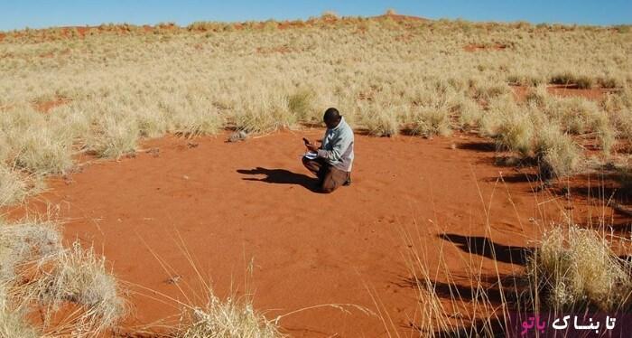 راز دایره های مرموز جن در نامیب آفریقا