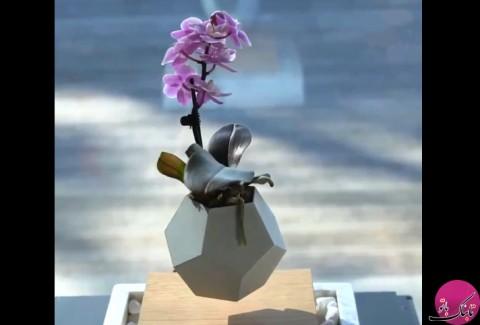 ابتکار فوق العاده دیدنی: گلدان معلق در هوا