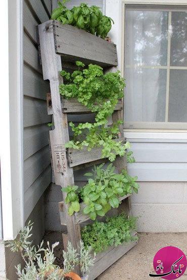 ساخت باغچههای عمودی با استفاده از پالتهای چوبی