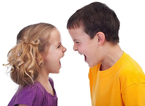 چگونگی برقراری دوستی بین خواهر و برادر