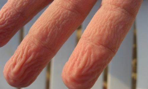 راز بزرگ نوک انگشتان در حمام