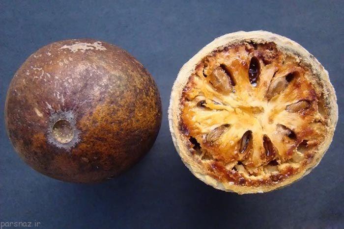 میوههای عجیبی که تابحال ندیدهاید++++++++لینک برای چینش عکس ها آمده