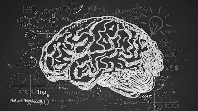 ماجرای «نابغه شدن» آدم ها بعد از «ضربه مغزی»