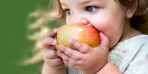 دانش آموزان در روزهای آلوده چه خوراکی هایی بخورند؟