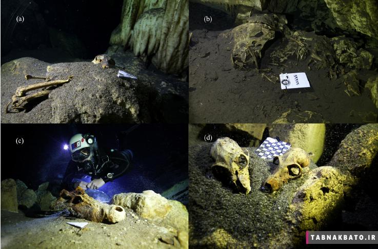عجیب ترین چیز هایی که در غارها کشف شدند