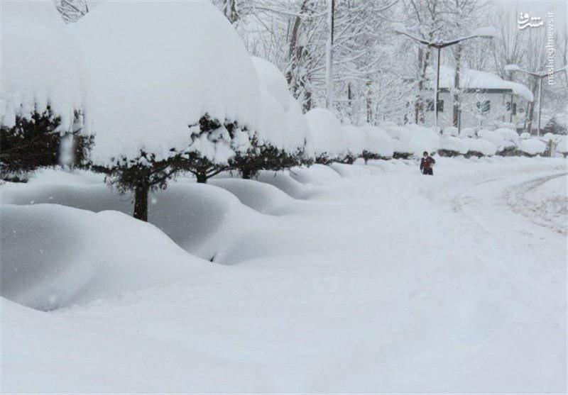 بارش نیممتری برف در سرعین +عکس
