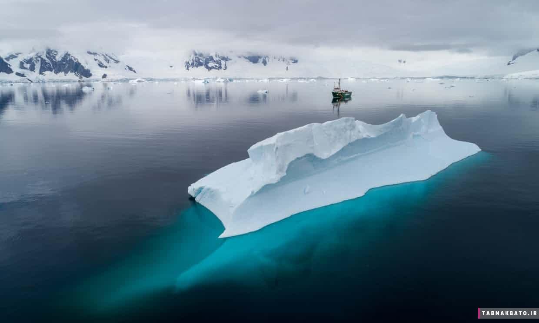 نخستين تصاوير موجوات اعماق قطب جنوب