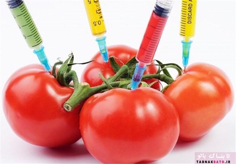 بیل گیتس غذاهای اصلاح شده ژنتیکی را کاملا سالم میداند