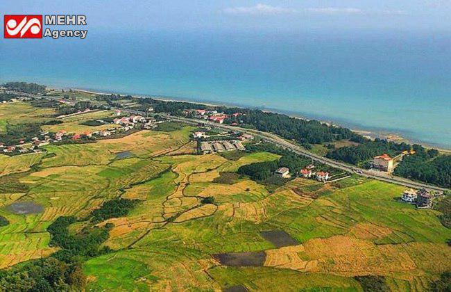 تصویری هوایی و زیبا از درياى خزر و شاليزارهای شمال