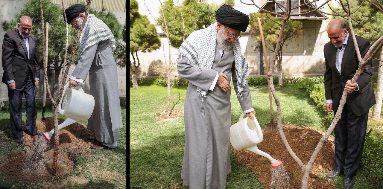 رهبر انقلاب امسال چه درختانی کاشتند؟ +عکس