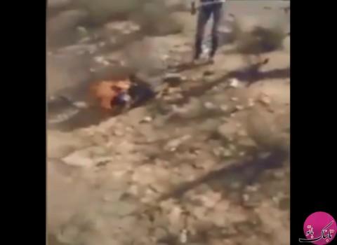 زنده سوزاندن یک فرمانده داعشی در صحرای سینا