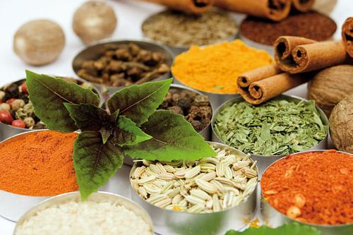 طب سنتی کدام سبک زندگی را به شما پیشنهاد می کند؟