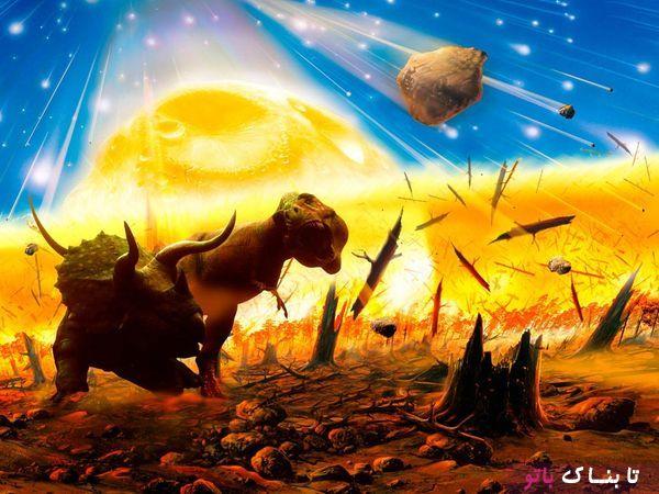 هشدار: آغاز موج ششم انقراض حیات وحش
