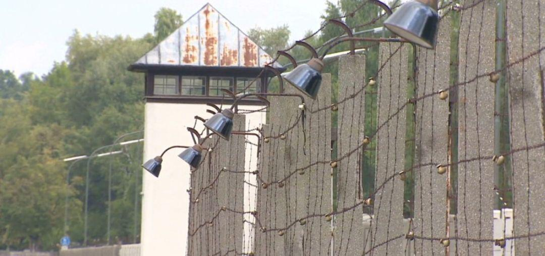 سرنوشت افروژرمن های عقیم شده در آلمان