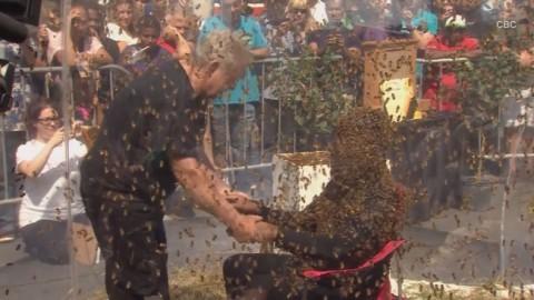 ثبت رکورد جهانی گینس برای قرار گرفتن بین هزاران زنبور عسل
