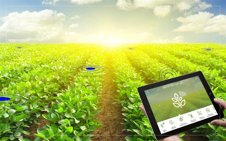 مزرعه تان را با آدرس «آی ـ پی» کنترل کنید