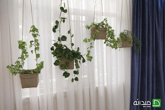 تزیین پنجره، ۶ قاب زیبا از نگاه خانمهای ایرانی!