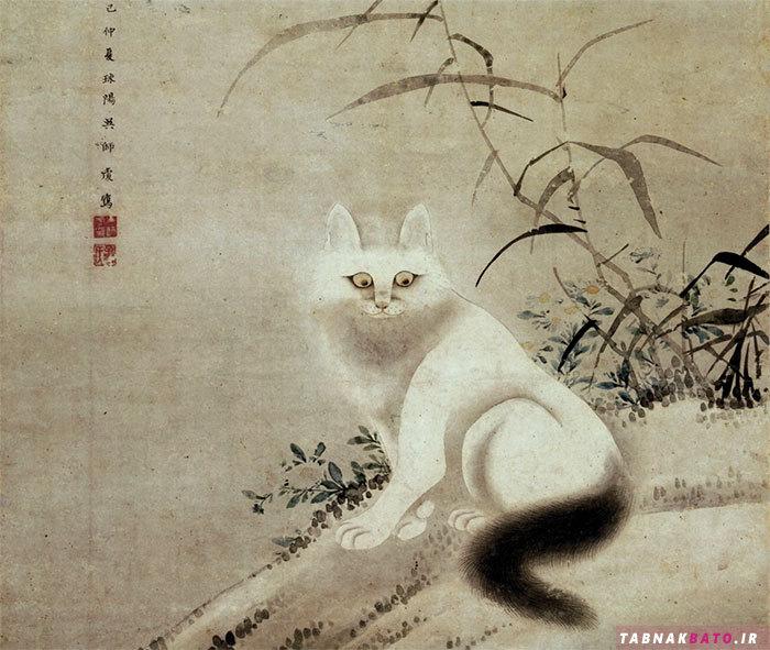جایگاه گربهها در فرهنگها و تمدنهای مختلف