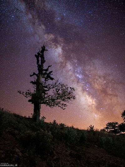 دیدنی های جنگل ابر شاهرود