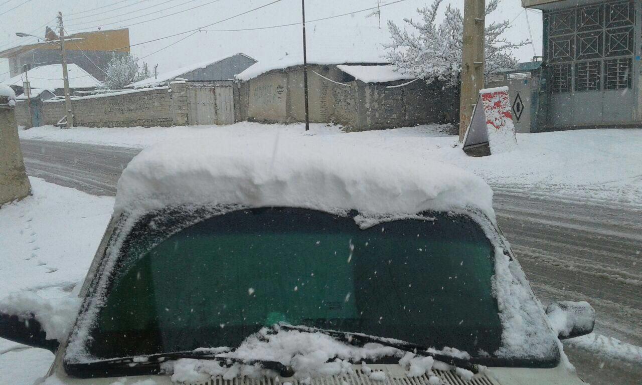 بارش برف ١٠ سانتی در فیروزکوه+عکس