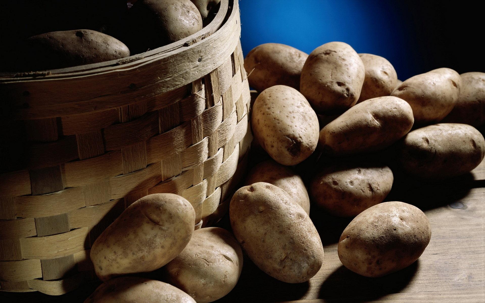 چگونه از جوانه زدن سیب زمینی جلوگیری کنیم؟ {hendevaneh.com}{سایتهندوانه} - 216930 831 - چگونه از جوانه زدن سیب زمینی جلوگیری کنیم؟