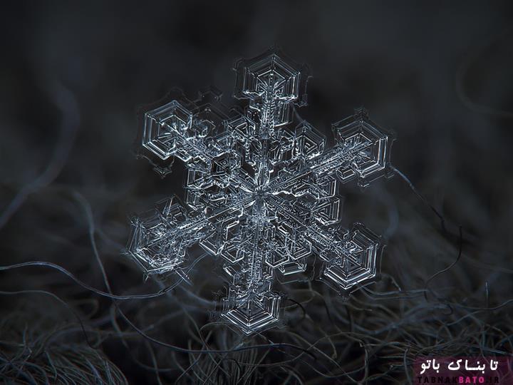 تصاویری شگفتانگیز از کریستالهای برف