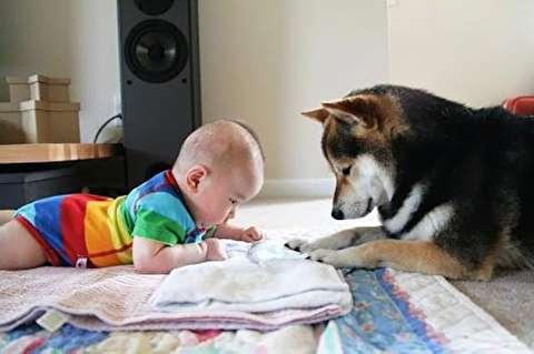 لحظات دیدنی و جالب کودکان با حیوانات(2)