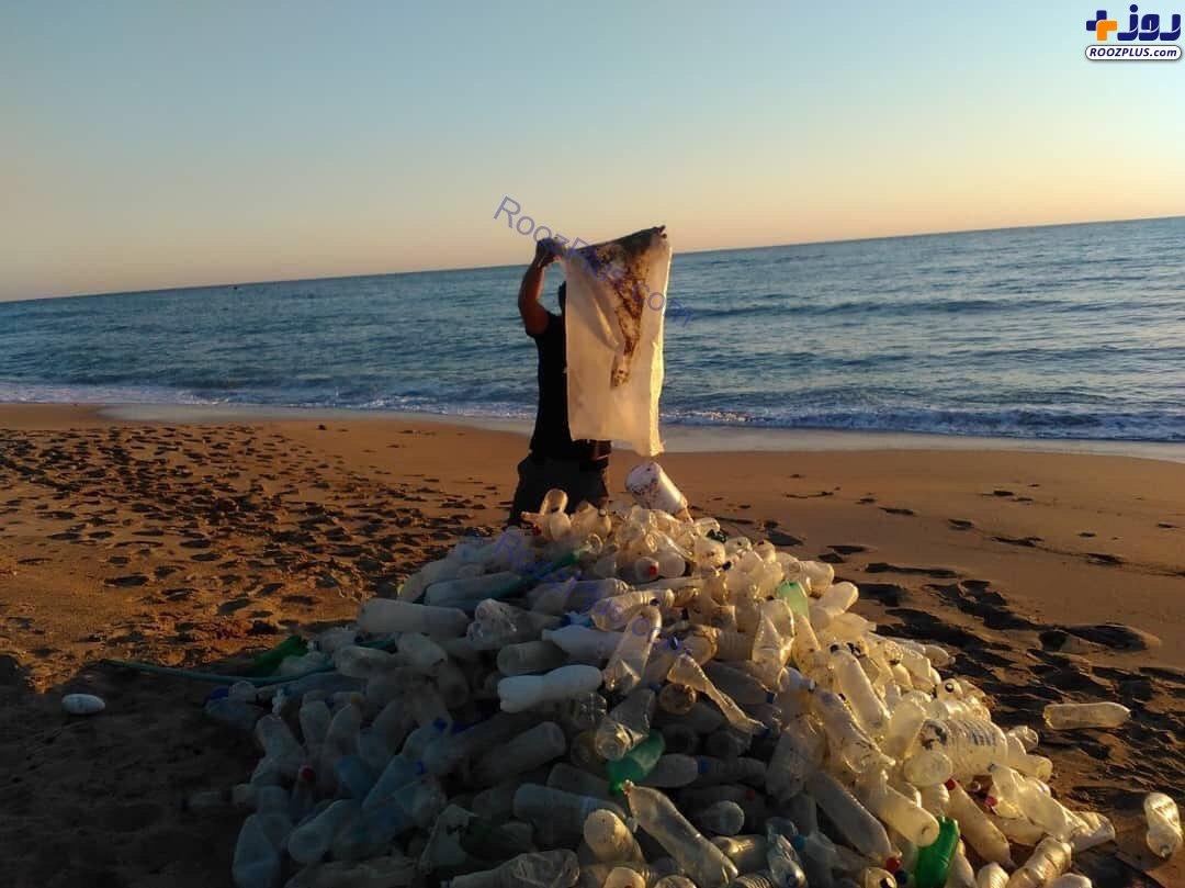 جمع آوری داوطلبانه زباله ها در ساحل عسلویه +عکس