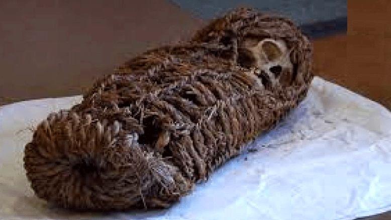 کشف جسد مومیایی شده یک کودک پس از ۲ هزار سال +عکس