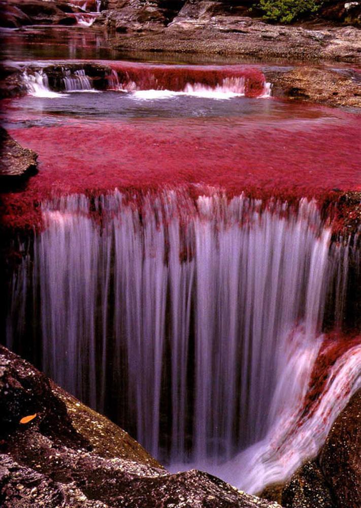 شگفت انگیزترین رودخانه جهان