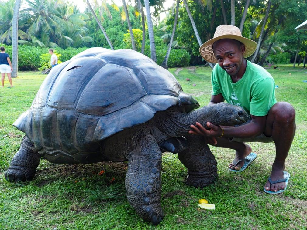 سنگینترین لاکپشت جهان +عکس