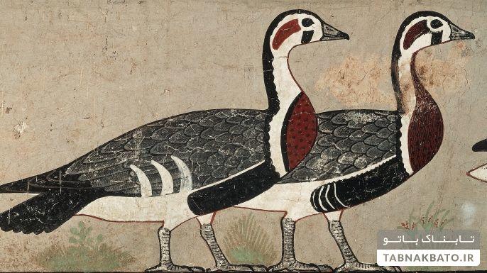 حقایق شگفت انگیز درباره مصر باستان