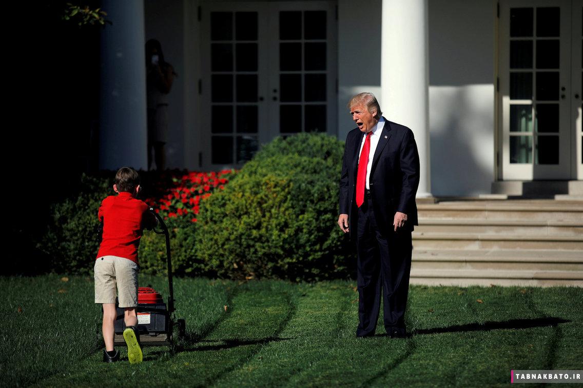 تصاویر کمتر دیده شده از باغ های کاخ سفید