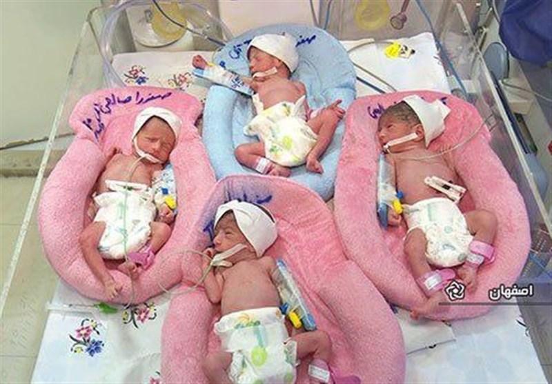 تولد ۴ قلوها در بیمارستان امام (ره) اهواز +عکس