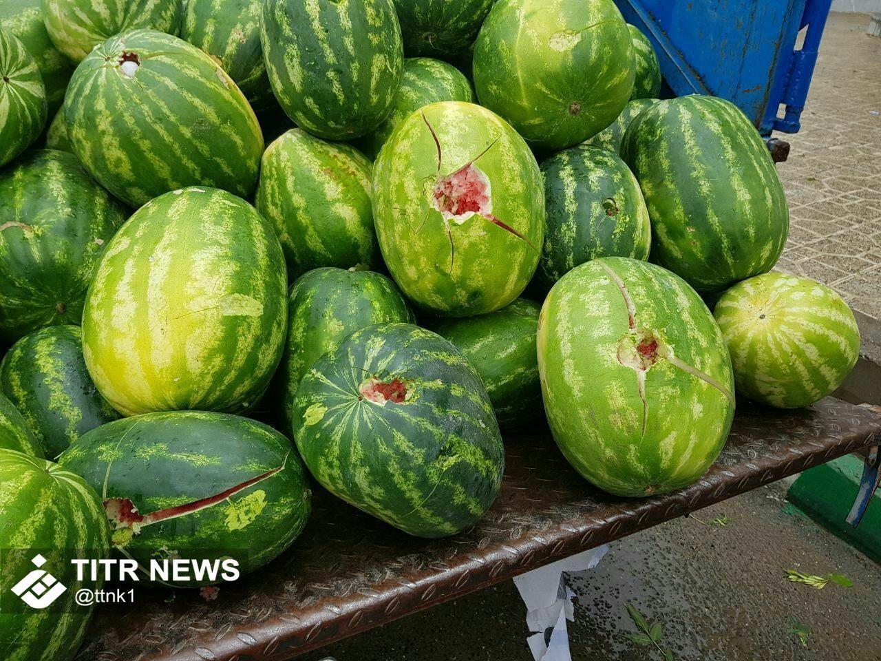 خسارت تگرگ بە هندوانههای یک دستفروش+عکس