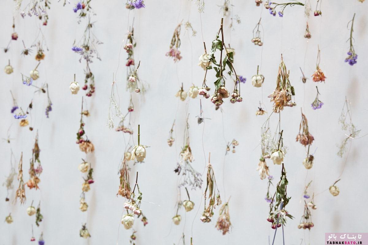 تبدیل فضای گالری به باغ گل شگفت انگیز