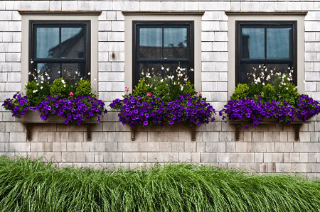 پوشش مدرن پنجره ها