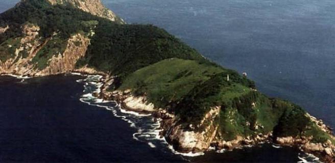 جزیره ای که در هر متر مربع آن یک مار سمی وجود دارد!