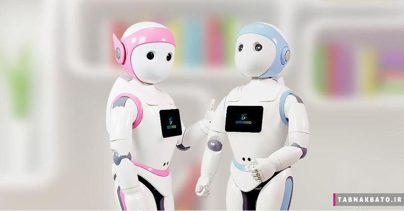 ربات های برادر در چین برای حل مشکل تک فرزندها
