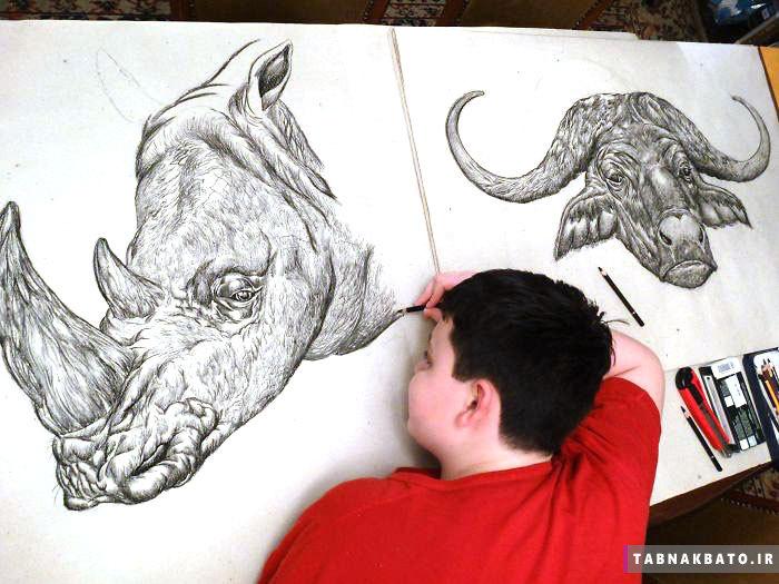 نقاشی از حیوانات با جزئیات بدون استفاده از مدل