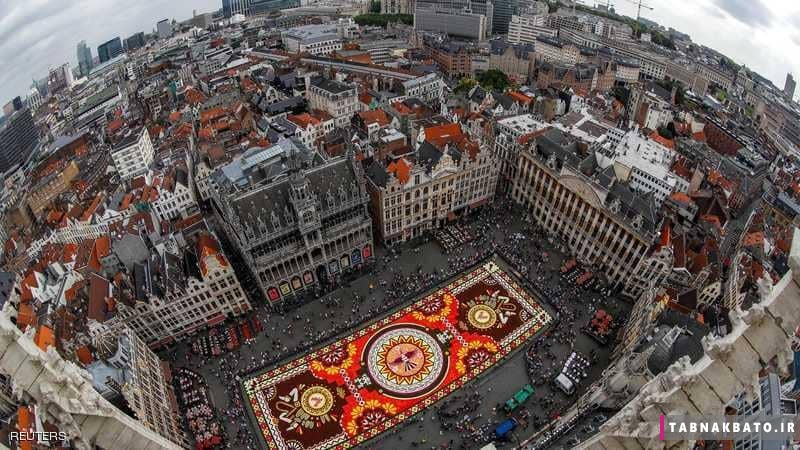فرش گل بزرگ در بروکسل