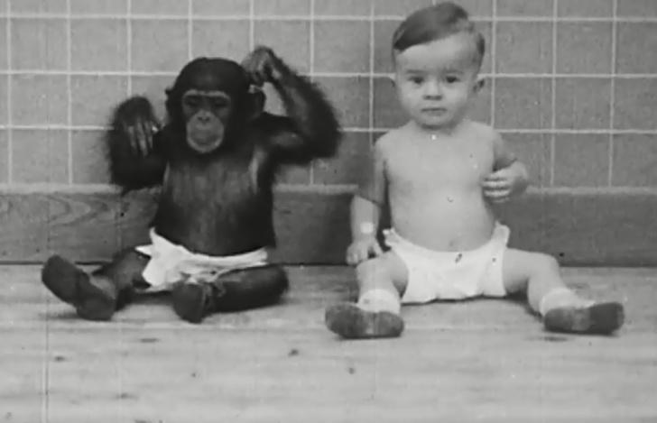 آزار دهنده ترین آزمایشاتی که روی کودکان انجام شده است
