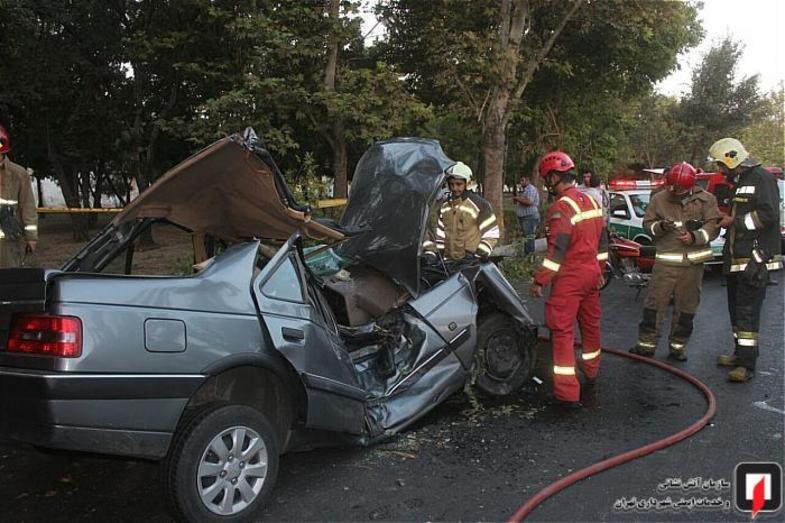 متلاشی شدن عجیب خودرو در برخورد با درخت +عکس