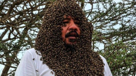 دفن شدن مرد سعودی زیر دهها کیلوگرم زنبور+عکس