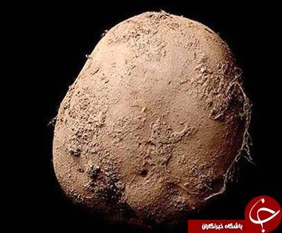 پرداخت میلیاردی برای خرید تصویر یک سیب زمینی +عکس